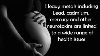 Heavy Metals Pregnancy