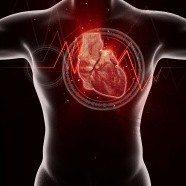 CardioMetabolic Test