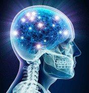 neuro-transmitter optimization