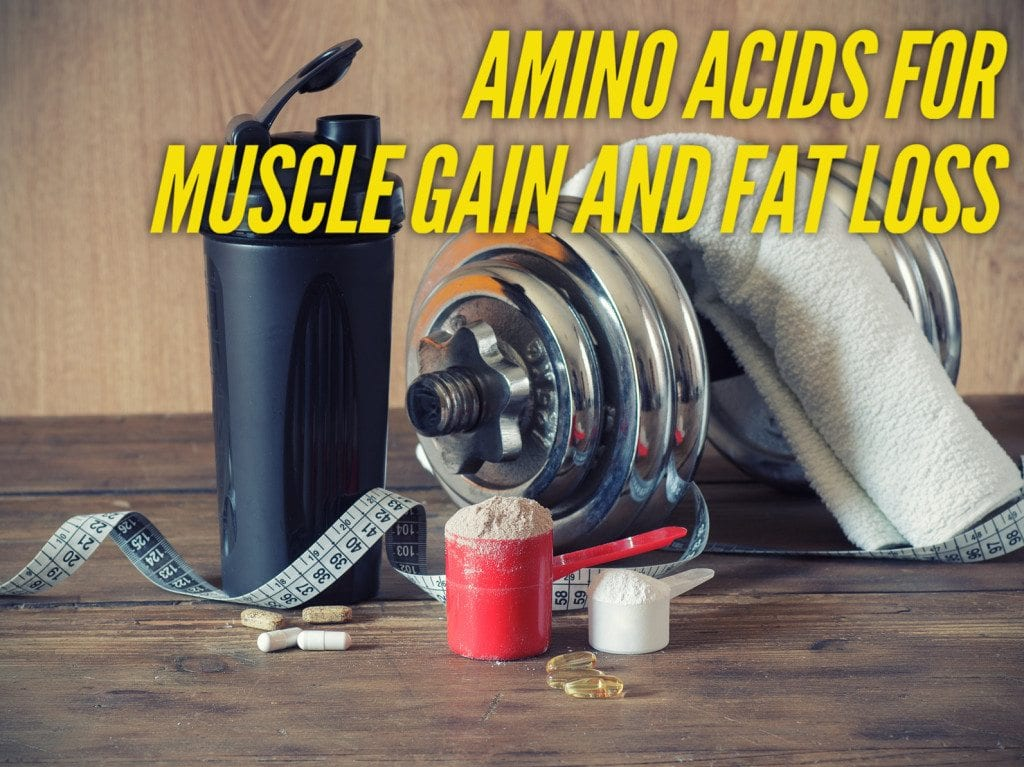 amino acids for muscle gain and fat loss