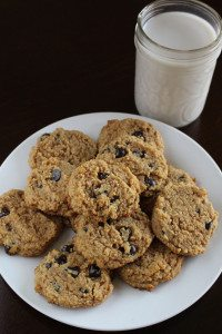 cookies that burn fat