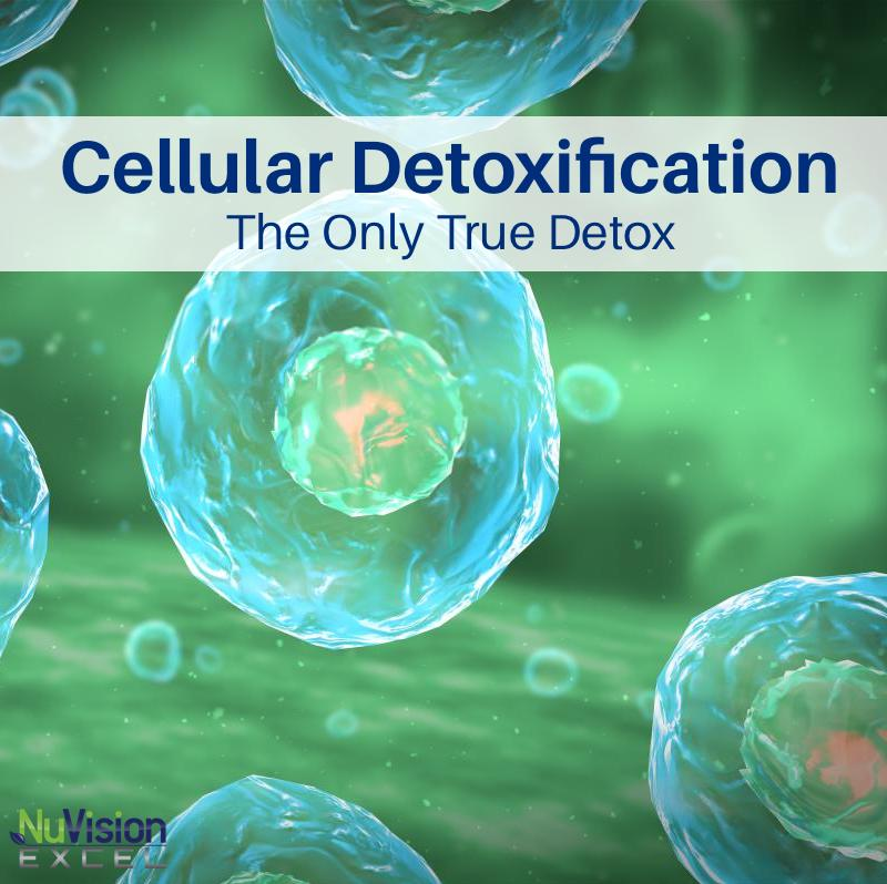 Cellular Detoxification