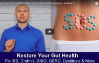Restore Your Gut Health